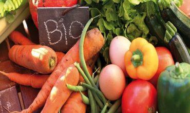 apelo-de-associacoes-organicas:-precisamos-de-uma-lei-organica-imediatamente.